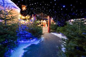 Santa's North Pole Experience