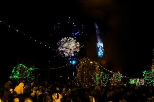 Turning on Wexford's Christmas Lights